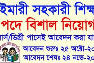 primary assistant teacher job circular 2020